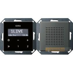 Radio pt. RDS naturalny stalowy Gira E22